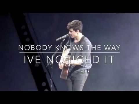 Bad Reputation Lyrics- Shawn Mendes