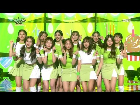 Music Bank 뮤직뱅크 - I.O.I 아이오아이- Vary Vary Vary 너무너무너무.20161104