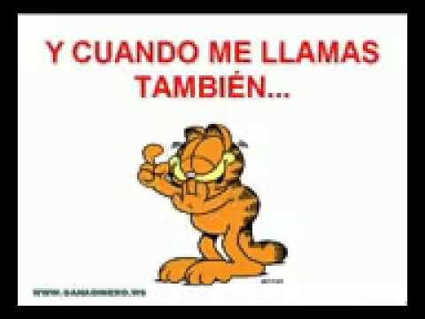 Amistad Con Garfield Youtube