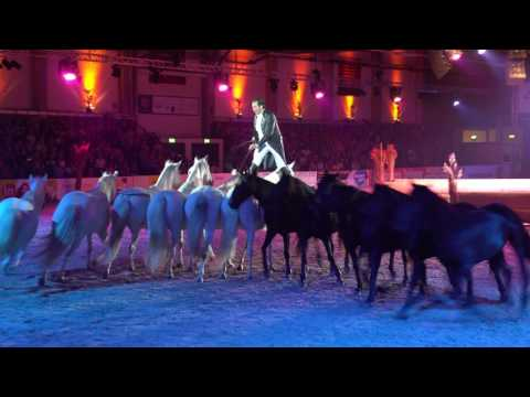 Nacht Der Pferde, Lorenzo In UHD/4K