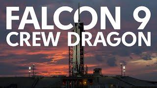 SpaceX Crew Dragon   Трансляция [перенос, новый стрим в описании]