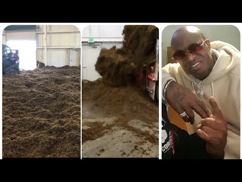 Dump truck FULL of weed gets gifted to Birdman for his birthday!
