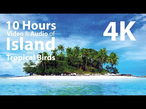 4K UHD 10 hours - Tropical Island & Gentle Birds/Waves Audio window - relaxation, meditation, nature