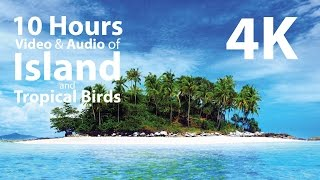 4K UHD 10 hours - Tropical Island & Gentle Birds/Waves Audio window - relaxation, meditation, nature