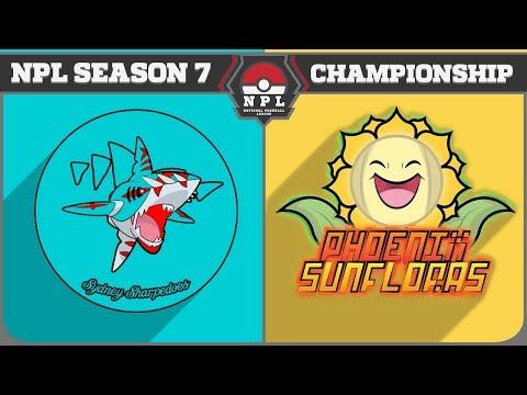 NPL S7 Finals: Sydney Sharpedoes vs Phoenix Sunfloras