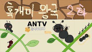 혹개미 왕국 만들기 2화 (사다리 연결, 거북이 장식품…