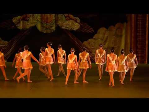 Instituto San Roberto 2015 Danza Dom 3