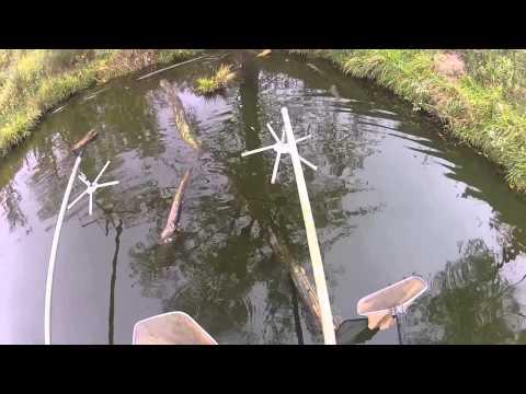Electrofishing - Knox 480 - Illinois Land Company Listing
