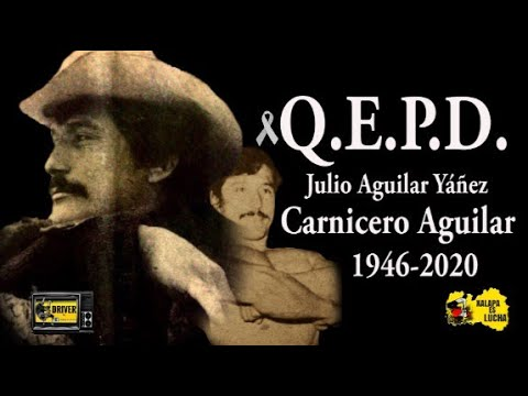 Hasta pronto Carnicero Aguilar