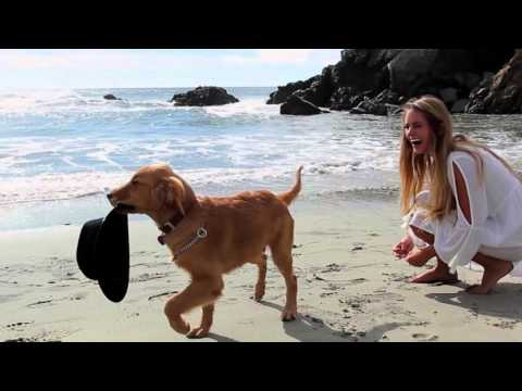 Big Sur X Emily Zeck