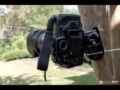 Top 5 Essential Camera Gear You Must-have | Best Photography Gadgets and Accessories