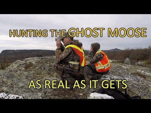 Moose Hunting In Newfoundland - Most Challenging Hunt Ever!!