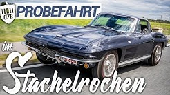 1964 Chevrolet Corvette C2 Sting-Ray  | OldtimerZentrum Berlin #25