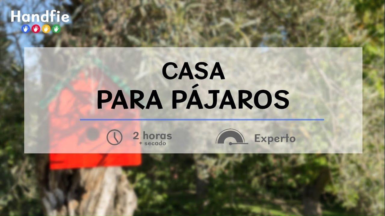 C mo hacer una casa para p jaros handfie diy youtube - Casas para pajaros ...