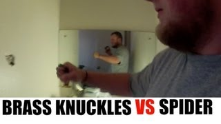 Giant Wall Spider Attacked by Man with Brass Knuckles
