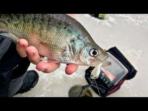 Ultra Light Rippin Raps equals a Crazy Day Ice Fishing for Crappie!!!