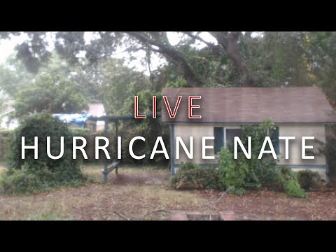 LIVE 🔴 Hurricane Nate | New Orleans Cam | EarthCam