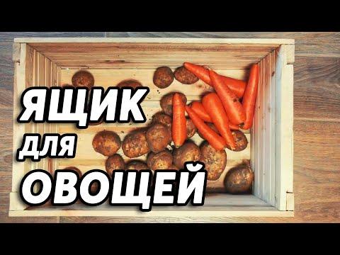 Термоящик для хранения овощей на балконе своими руками