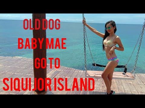 Old Dog Baby Mae go to Siquijor Island