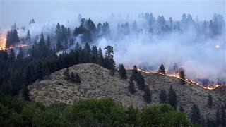 Wildfires Devastate Washington State