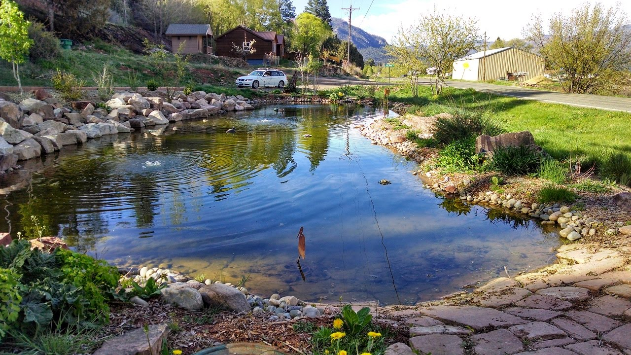 Building Large Pond U0026 Waterfall U003d Dream Landscaping Durango Colorado U0026  Gardenhart Landscape U0026 Design   YouTube