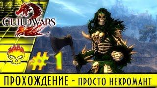 guild Wars 2 на русском. Полное прохождение #1 за некромант, начало пути, первая локация и квесты