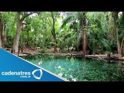 Campeche un hermosos lugar para vacacionar / De mochilazo