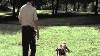 The Walking Dead - Efeitos Especiais da 1ª Temporada
