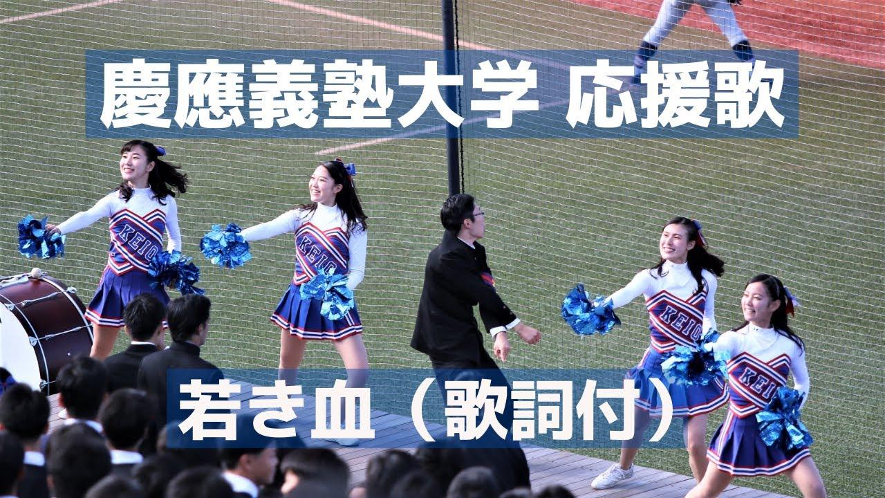 大学 応援 団 慶應 義塾