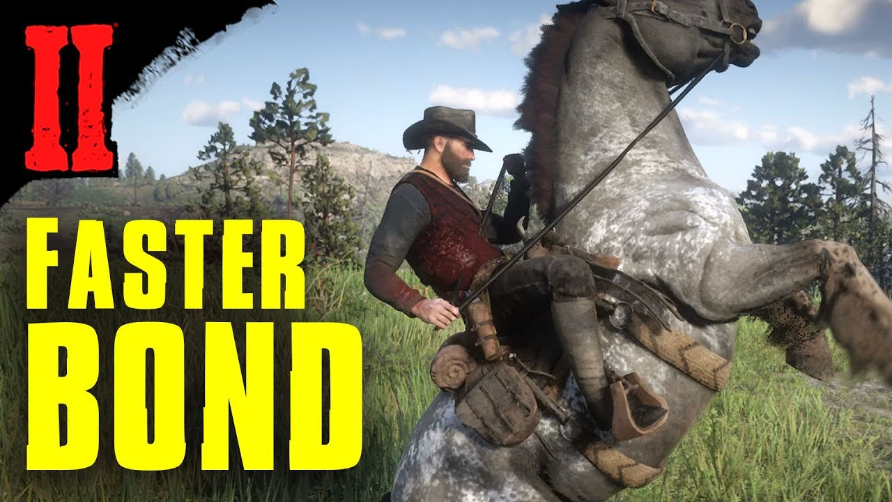 Horse Bonding Quick Tips Red Dead Redemption 2 Youtube