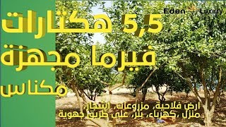 ferme équipée sur Meknes Maroc 5,5 hectar فيرما للبيع مجهزة بمكناس