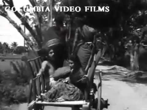 Digambara Samiyar 1950--Vaazha Piranthavar Naamae