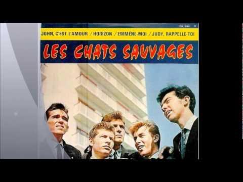 Les Chats Sauvages avec mike Shannon , Horizon ( instrumental ).wmv