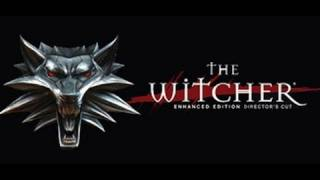 The Witcher Retrospective Review