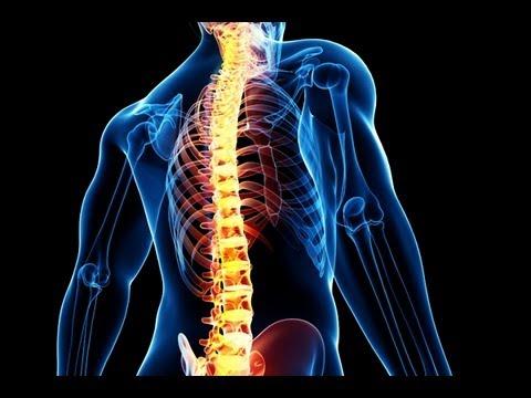 Упражнения для укрепления мышц спины -