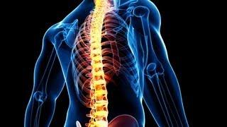 Упражнения для позвоночника. Упражнения для правильной осанки. Упражнения для укрепления спины.(Здоровая спина: http://www.athleticblog.ru/ Упражнения для позвоночника. Упражнения для правильной осанки. Упражнения..., 2011-06-28T14:47:36.000Z)