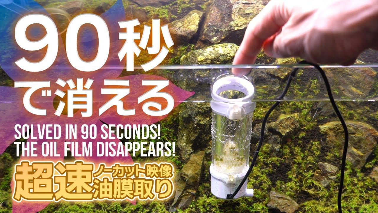 90秒で油膜やゴミが消える!自作油膜取りの実力をノーカット映像でお見せします #アクアリウム #ベタ