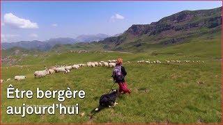 Être bergère béarnaise en 2018