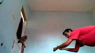 pelatihan burung hantu celepuk - indra cagebird.mp4