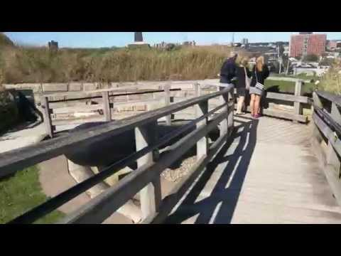 A full loop around the Halifax Citadel National Historic Site's ramparts