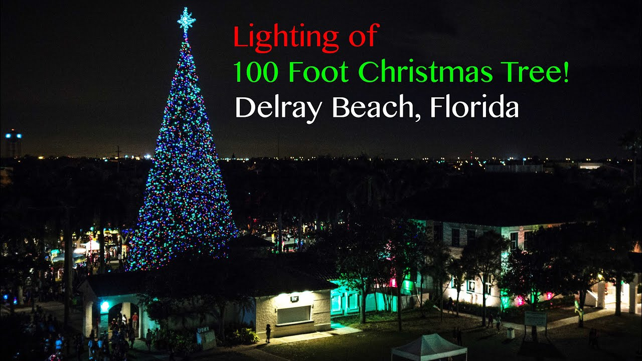 Delray Beach Christmas Tree Lighting 2015 Youtube