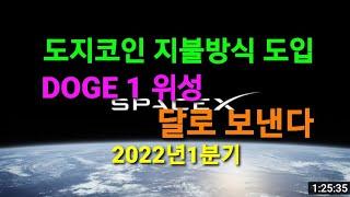 테슬라 소식 뉴스 주식 도지코인 위성 달로 보낸다