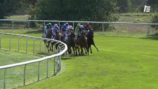 Vidéo de la course PMU PRIX DECATHLON LA TESTE