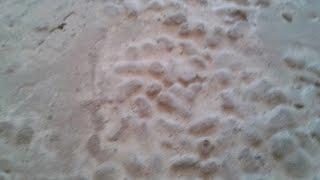 video-стяжка пола по керамзиту-кухня.(Видео по теме как сделать стяжку пола по керамзиту., 2015-12-23T12:29:32.000Z)