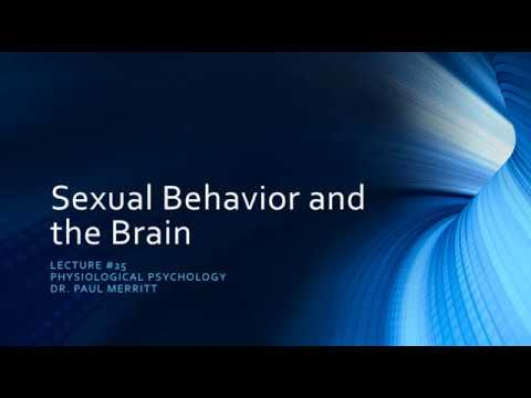 Sexual Behavior and the Brain
