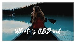 What is CBD oil? Wellness Wednesday - Dr. Don Walsh New Smyrna Beach Chiropractor