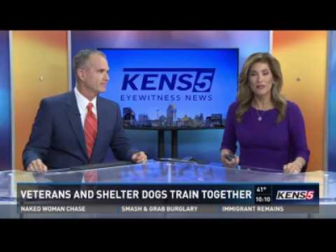 Veterans, rescue dogs helping each other in new program kens Universal K9