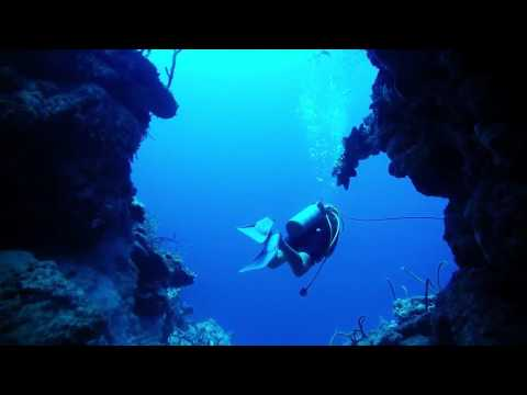 Wrecks and Reefs - Diving at the Bay of Pigs, Cuba