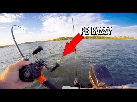 Catch and Cook Challenge!!! - Caught My PB Bass?