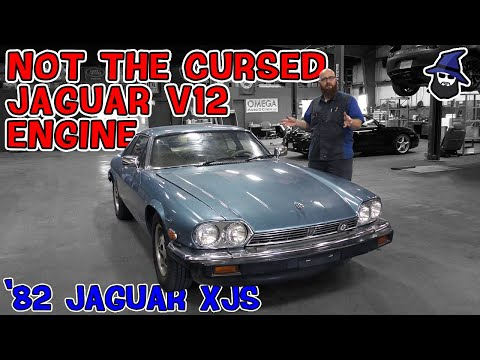 '82 XJS with the cursed Jaguar V12 comes into the CAR WIZARD's shop. Can he get it running?
